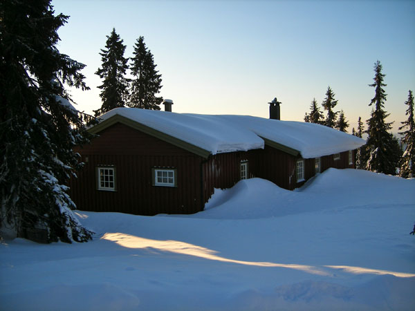 Cabin covered in snow surrounded by trees