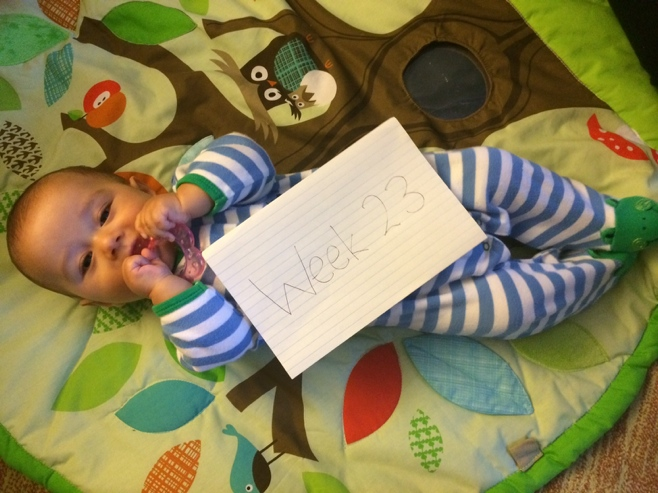 Baby on activity mat with 23 week sign