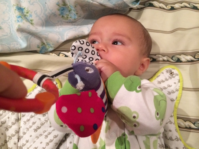 Baby playing with butterfly toy