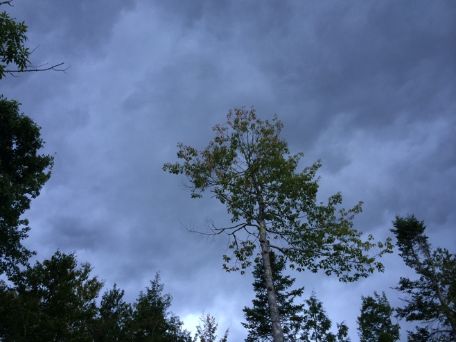 Dark skies at balsam cove