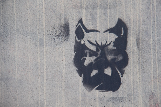 Graffiti of dog