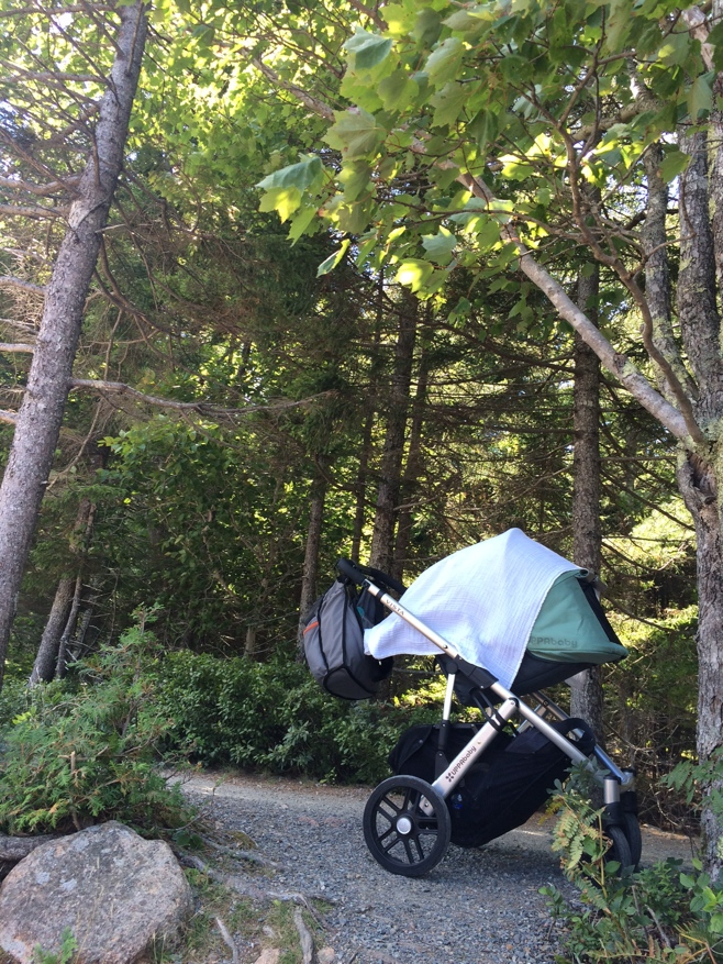Stroller parked on side of lake