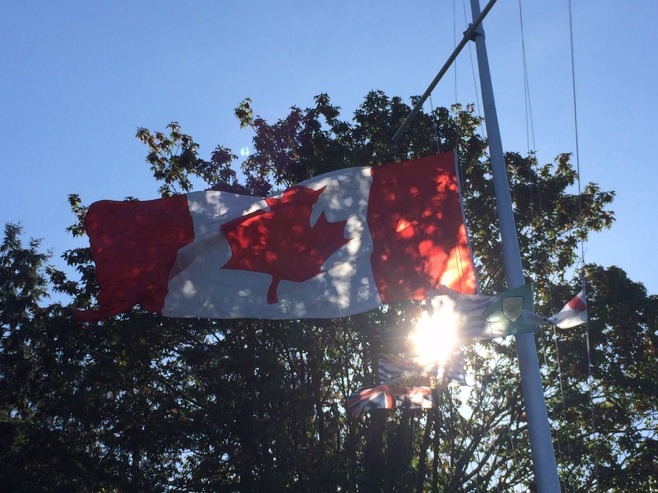 Canadian flag in the sun