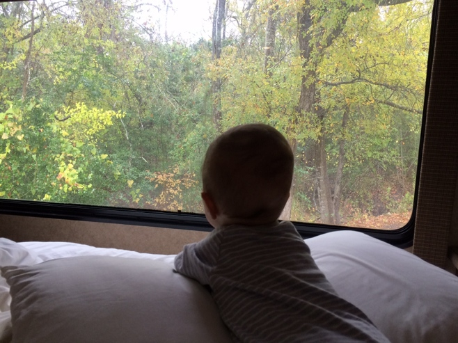 Baby looking out RV window