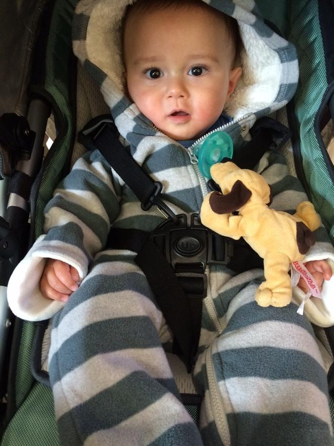 Baby in bear suit