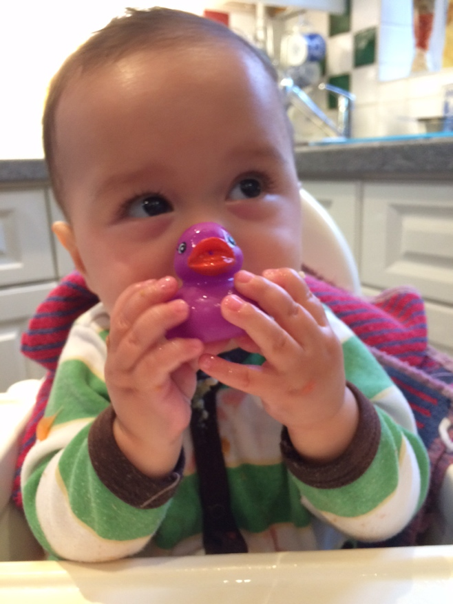Baby eating purple bath duck