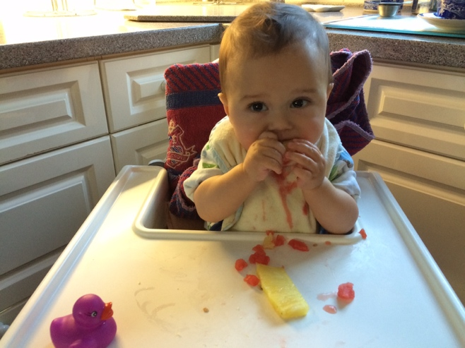 Baby in high chair eating watermelon