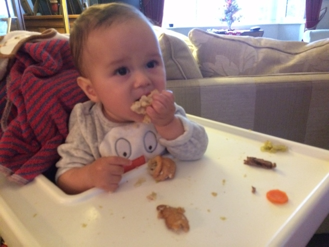 Baby in high chair eating roast lunch