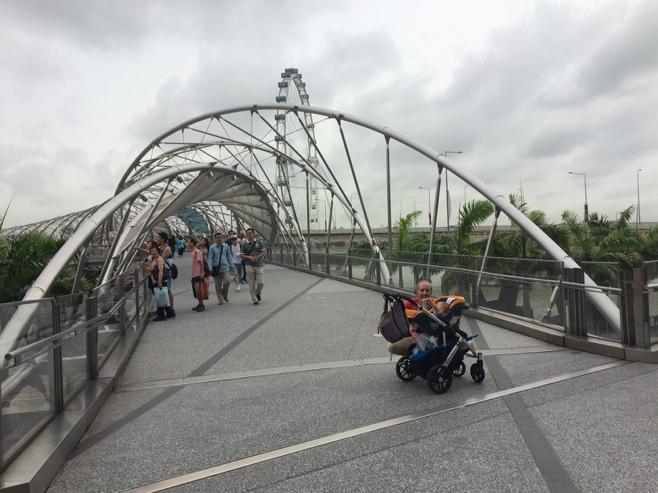 Singapore bridge and Ferris wheel