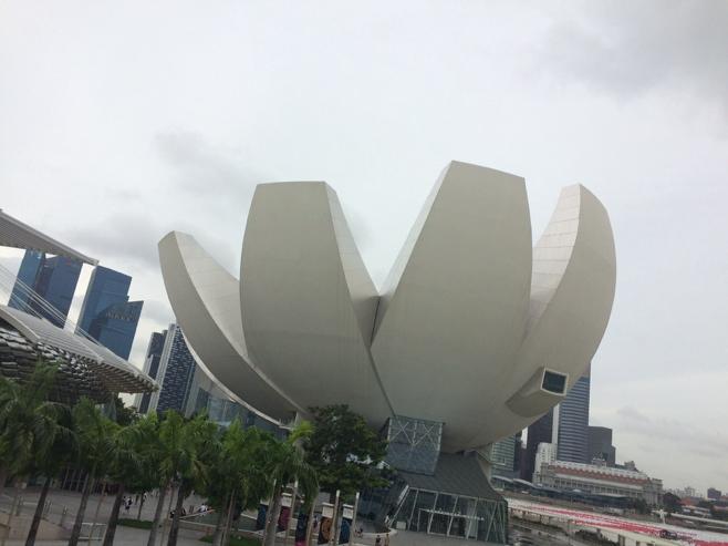 Singapore lotus building