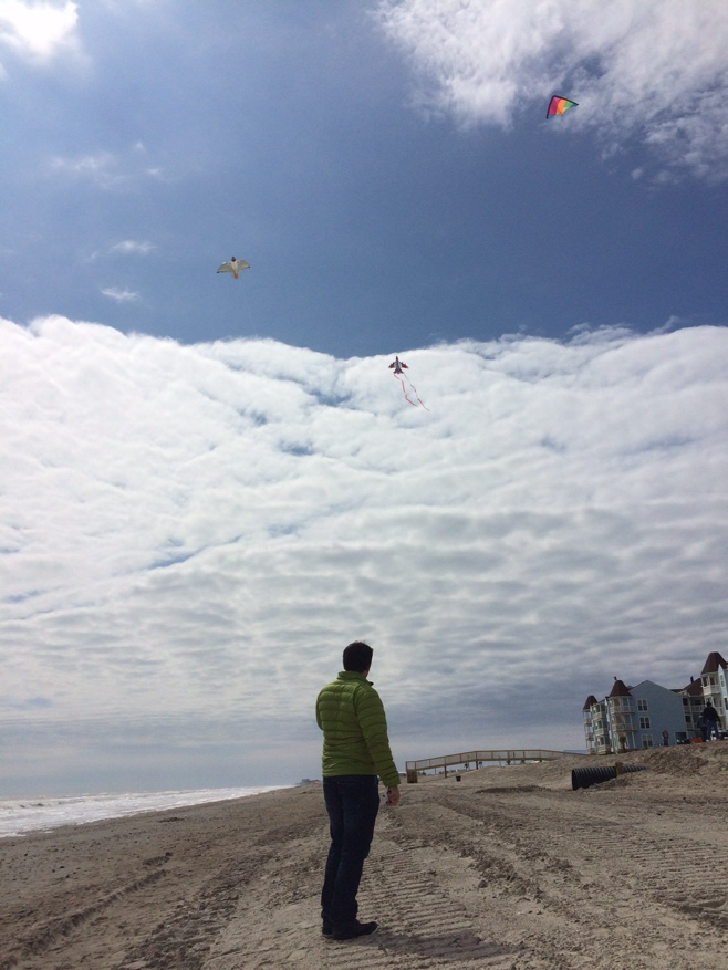 Man flying kite on beach