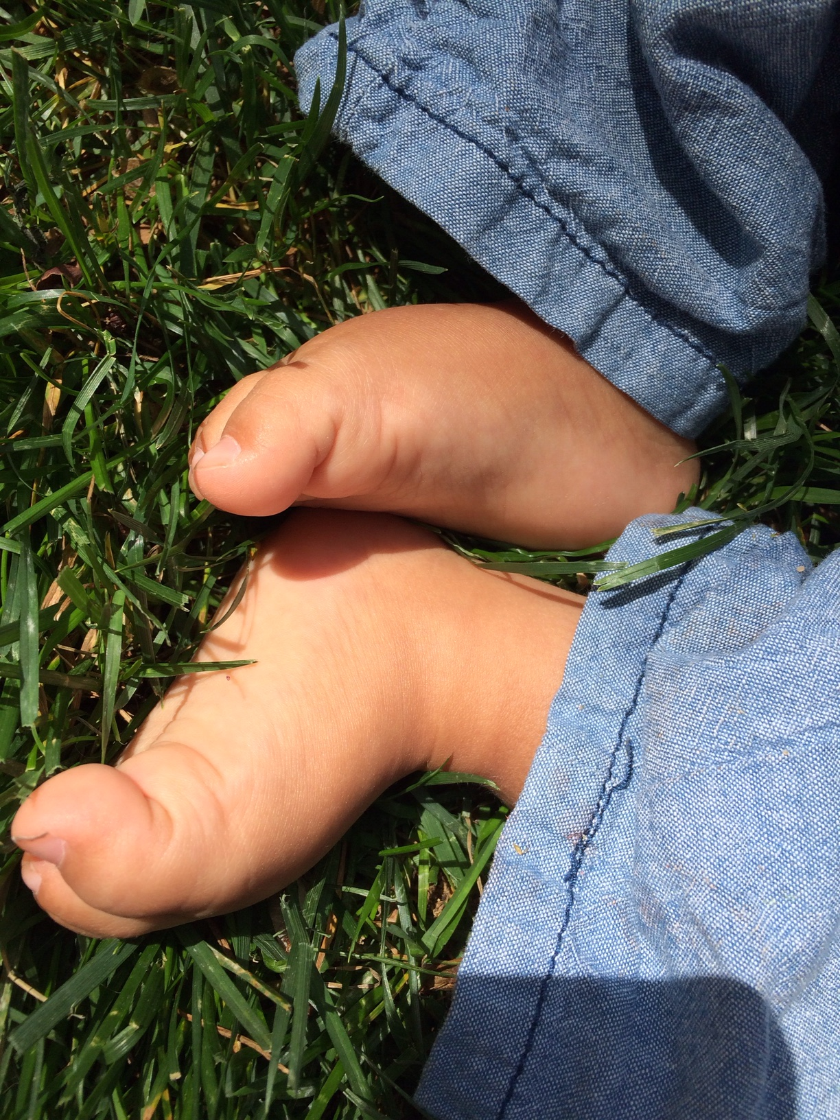 Grass and toes